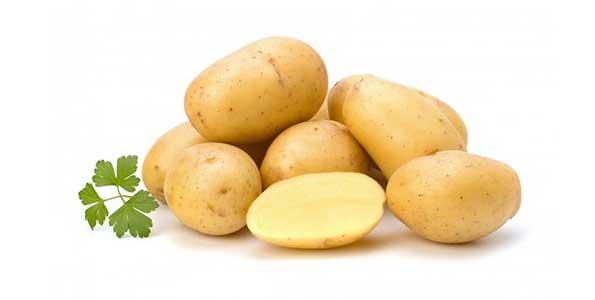 Pomme de terre Agata